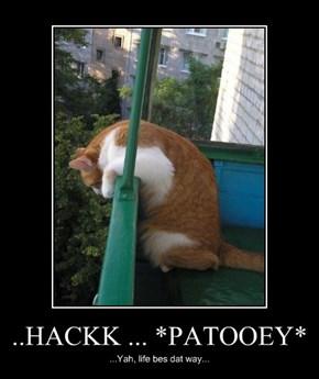 ..HACKK ... *PATOOEY*