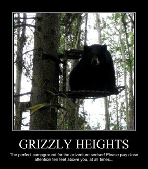 GRIZZLY HEIGHTS