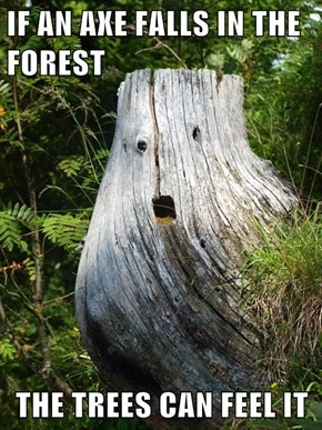 IF AN AXE FALLS IN THE FOREST  THE TREES CAN FEEL IT
