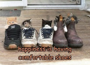 happiness is having comfortable shoes