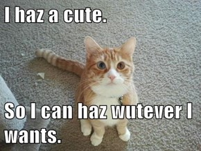 I haz a cute.  So I can haz wutever I wants.