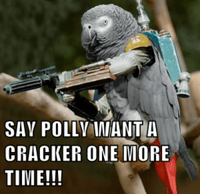 SAY POLLY WANT A CRACKER ONE MORE TIME!!!