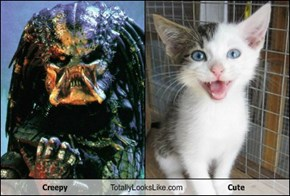 Creepy Totally Looks Like Cute