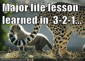 Major life lesson learned in  3-2-1...