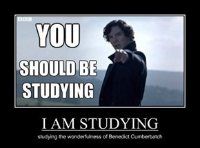 I AM STUDYING