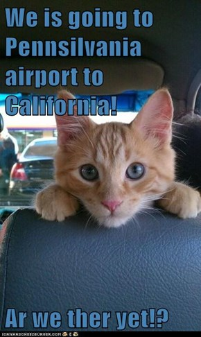 We is going to Pennsilvania airport to California!  Ar we ther yet!?