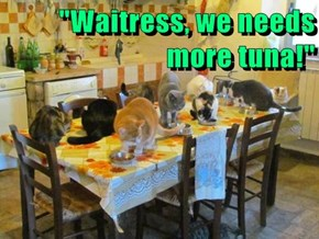 """Waitress, we needs more tuna!"""