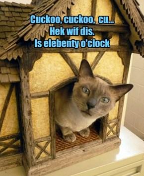 Cuckoo, cuckoo,  cu...  Hek wif dis.  Is elebenty o'clock