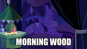 Twilight Discovers The Wonders Of Wings
