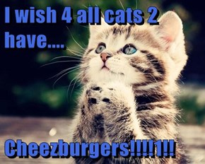 I wish 4 all cats 2 have....  Cheezburgers!!!!1!!