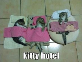 kitty hotel