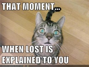 THAT MOMENT...  WHEN LOST IS EXPLAINED TO YOU