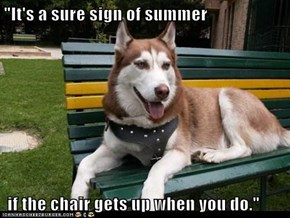 """It's a sure sign of summer   if the chair gets up when you do."""