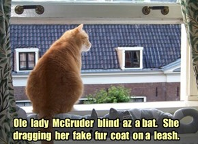 Ole  lady  McGruder  blind  az  a bat.