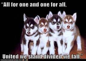 """All for one and one for all,   United we stand divided we fall."""