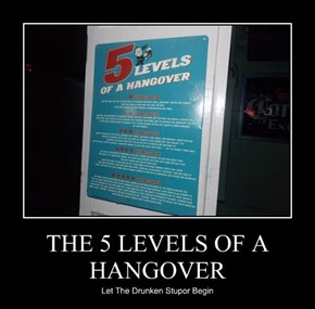 THE 5 LEVELS OF A  HANGOVER