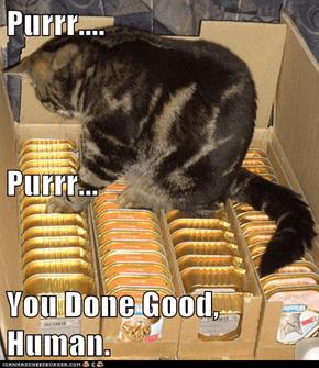 Purrr.... Purrr... You Done Good, Human.