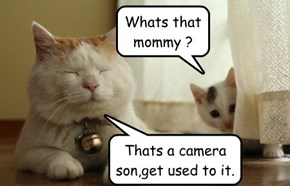 Whats that mommy ?