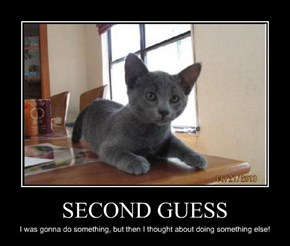 SECOND GUESS