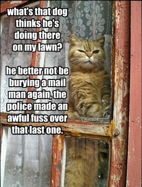 what's that dog thinks he's doing there  on my lawn?  he better not be burying a mail man again, the police made an awful fuss over that last one.