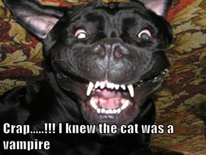 Crap.....!!! I knew the cat was a vampire