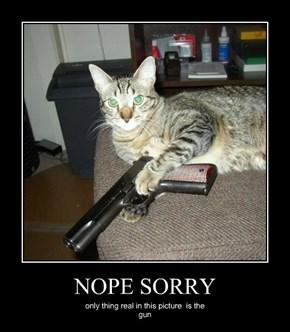 NOPE SORRY