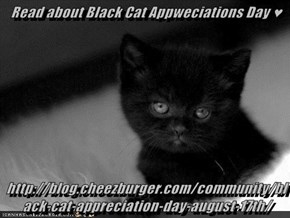 Read about Black Cat Appweciations Day ♥  http://blog.cheezburger.com/community/black-cat-appreciation-day-august-17th/