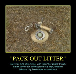 """PACK OUT LITTER"""