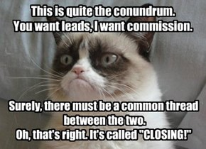 This is quite the conundrum. You want leads, I want commission.