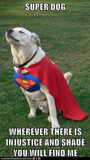SUPER DOG  WHEREVER THERE IS INJUSTICE AND SHADE YOU WILL FIND ME