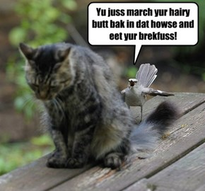 No baby birds fur YU!