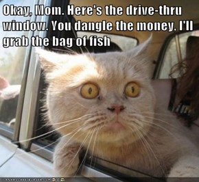 Okay, Mom. Here's the drive-thru window. You dangle the money, I'll grab the bag of fish