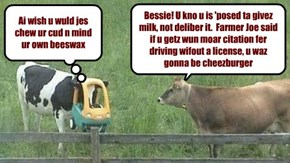 Bessie haz a need for speed