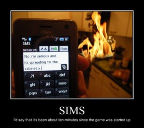 Sims Are Idiots