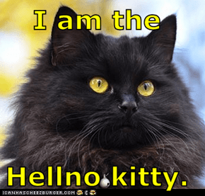 I am the  Hellno kitty.