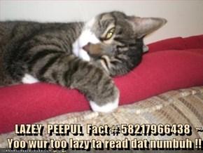 LAZEY  PEEPUL  Fact # 58217966438  ~  Yoo wur too lazy ta read dat numbuh !!