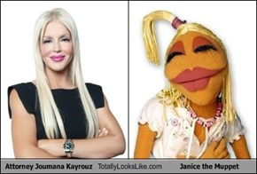Attorney Joumana Kayrouz Totally Looks Like Janice the Muppet
