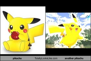 pikachu Totally Looks Like another pikachu