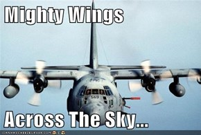 Mighty Wings  Across The Sky...