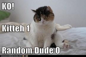KO! Kitteh 1 Random Dude 0
