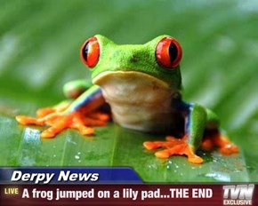Derpy News - A frog jumped on a lily pad...THE END