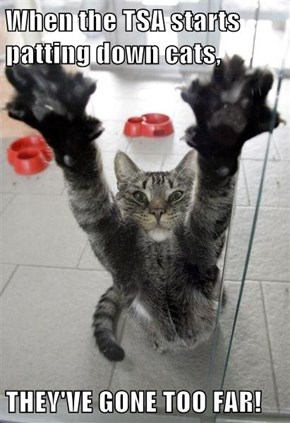 When the TSA starts patting down cats,  THEY'VE GONE TOO FAR!