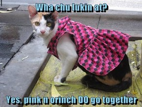 Wha chu lukin at?  Yes, pink n orinch DO go together
