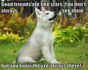 Good friends are like stars. You don't always                                          see them  but you know they're always there!
