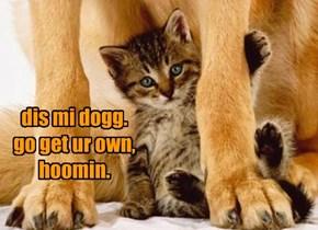 dis mi dogg. go get ur own, hoomin.