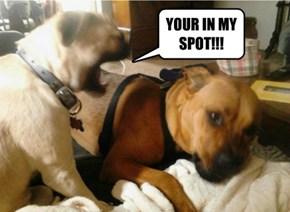 He took my spot!