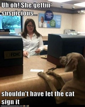 Uh oh! She gettin' suspicious...  shouldn't have let the cat sign it