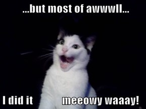 ...but most of awwwll...  I did it             meeowy waaay!