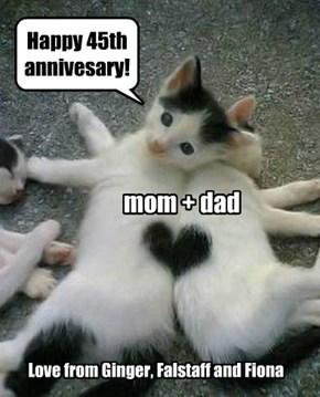 mom + dad