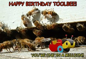 HAPPY BIRTHDAY TOOLBEE!
